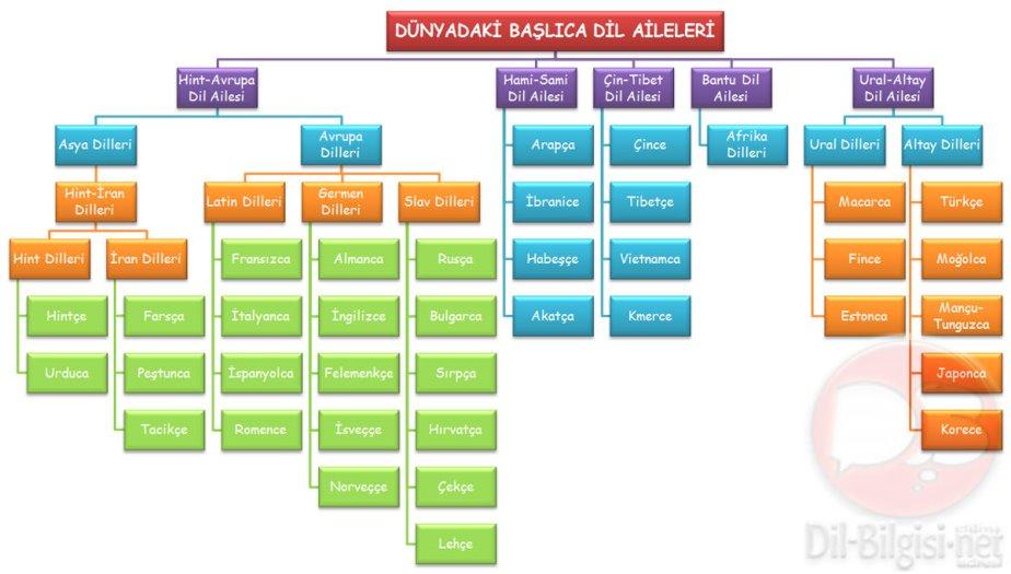 Dil-Aileleri-Kavram-Haritasi